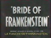 Ciné-club : La fiancée de Frankenstein de James Whale | Le mythe de Frankenstein et le mythe du vampire | Scoop.it