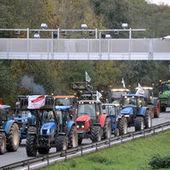 Le gouvernement veut la levée du blocus d'agriculteurs après un accident mortel | Projet de DA Julia | Scoop.it
