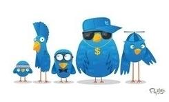 Cómo gestionar Twitter de modo profesional | Ciencias exactas para docentes de secundaria | Scoop.it