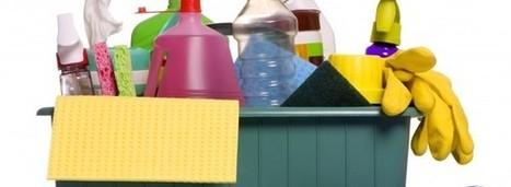 Limpador de banheiro caseiro - Lar Natural   Casa e decoração   Scoop.it