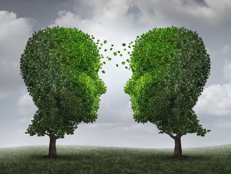 Les arbres se parlent-ils? | Veille Scientifique Agroalimentaire - Agronomie | Scoop.it