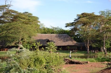 Viaggi in Africa: Camping safari in tenda in Africa | ViaggiSudAfrica | Scoop.it
