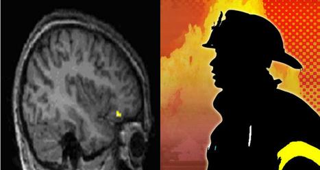 Neuroimagen de la resiliencia | Psicología Positiva | Scoop.it