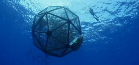 Floating fish farms offer a more sustainable way to produce seafood | The Authentic Food & Wine Experience | Scoop.it