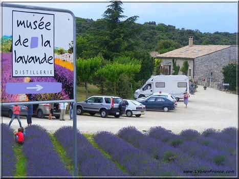 LYon-Actualités.fr: Tourisme : en Rhône-Alpes, les villes rient et la montagne pleure... | LYFtv - Lyon | Scoop.it