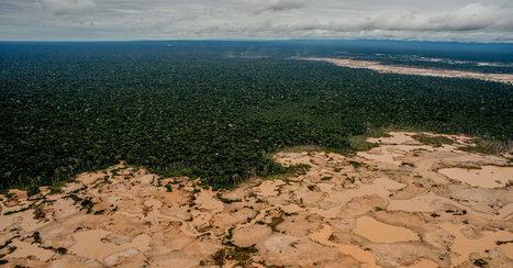 Peru Scrambles to Drive Out Illegal Gold Mining and Save Precious Land | Rainforest EXPLORER:  News & Notes | Scoop.it