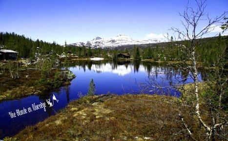 La #Norvège, ce pays magnifique - Une blonde en Norvège | Arctique et Antarctique | Scoop.it