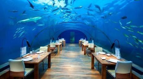 Cenar en un restaurante bajo el agua | Curiosidades | RedRestauranteros: Las Curiosidades | Scoop.it