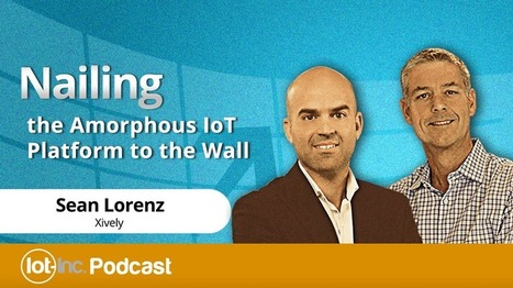 Nailing the Amorphous IoT Platform to the Wall - The Business of the Internet of Things | The Internet of Things | Scoop.it