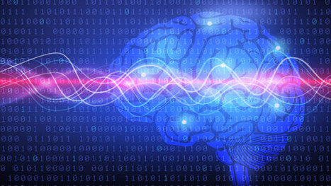 Les élèves moins performants ont un cerveau différent | Numérique & pédagogie | Scoop.it