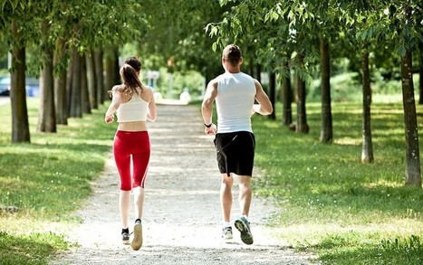 Exercise changes the way fat is stored - Telegraph | Peak Performance News | Scoop.it