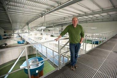 Hatchery International for Fish Hatchery Managers | Aquaculture | Scoop.it