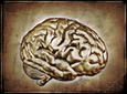 The New Horizon of Neuroscience | In Their Own Words | Big Think | NeuroNews | Scoop.it