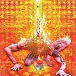 Anatomy and Physiology of Root Chakra aka Muladhara Chakra   Pro Healing Secrets   Scoop.it