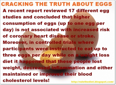 Why eggs are good for you even if you're on a weight loss diet | healthy diet for a healthy lifestyle | Scoop.it