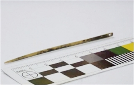 World's oldest needle found in Siberian cave that stitches together human history   Archaeo   Scoop.it