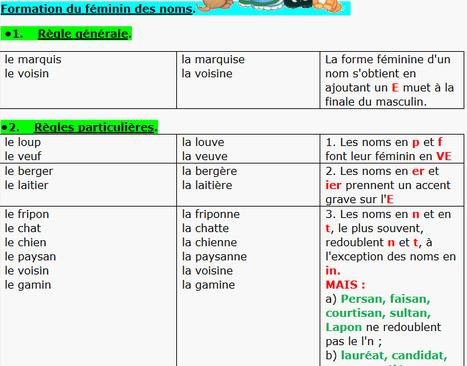 Féminin des noms (cours)   FLE enfants   Scoop.it