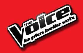 Concert The Voice Tour 2013 | Armada de Rouen 2013 | Scoop.it