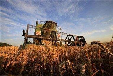 Les biocarburants plus nocifs que le diesel ?   décroissance   Scoop.it