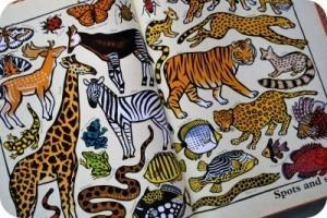 Online Encyclopaedia of Zoology | Biology@BellaOnline | Scoop.it