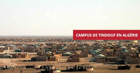 le statuquo de #Tindouf devient très #coûteux pour tout le #monde – Portail du #sahara @barkinet #fb | Barkinet | Scoop.it