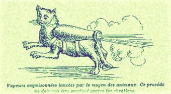 A la rescousse des armées d'Alsace, voici le Chat Poté !   Chroniques d'antan et d'ailleurs   Scoop.it