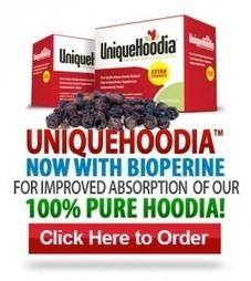 Best Appetite Suppressants To Lose Weight Fast   wiccanspells   Scoop.it