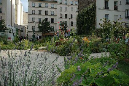 L'agriculture urbaine a le vent en poupe ! - Urban Attitude   Urbanisme   Scoop.it