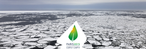 La COP 21 | Com' FairBusiness | Scoop.it