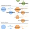 SEO  & WEB ANALYTICS & CRO