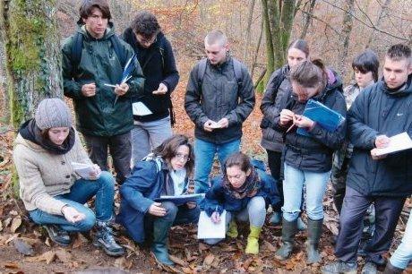 La santé de la forêt s'appuie sur le sol | Agriculture en Dordogne | Scoop.it