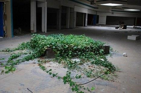 Completely Surreal Photos Of America's Abandoned Malls   La Synthèse Retail, Digital & CRM par etixia   Scoop.it