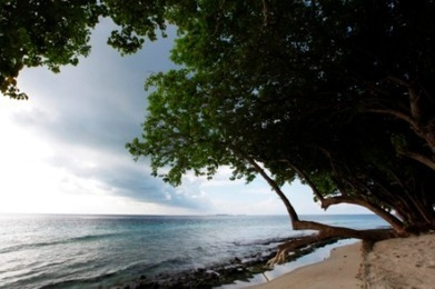 Small island states need action on climate loss and damage - AlertNet | Ecosystem and community-based climate adaptation | Scoop.it