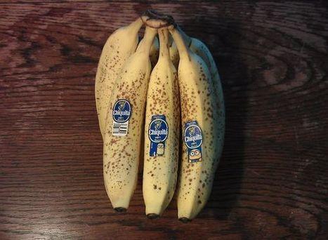 Turn overripe bananas into Chocolate Ice Cream! | Shrewd Foods | Scoop.it