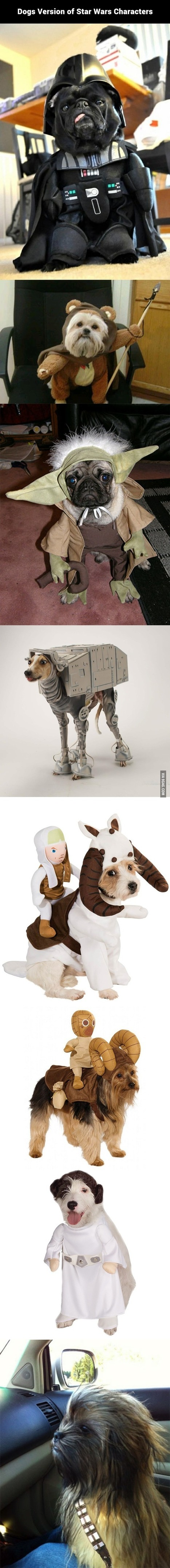 Dogs Version of Star Wars Characters | Facts and quotes | Scoop.it