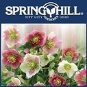Spring Hill Nursery - Florists - Tipp City - Ohio   Springhill Nursery   Scoop.it
