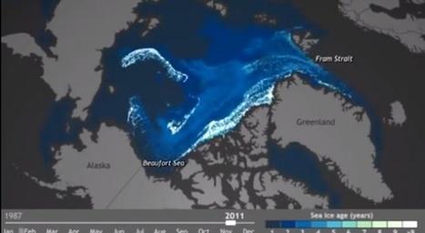 En Arctique, la glace la plus vieille fond et emporte le reste de la banquise avec elle | Slate | Conscience - Sagesse - Transformation - IC - Mutation | Scoop.it