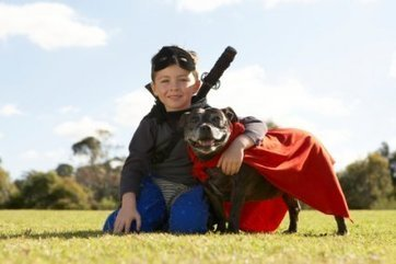 Pet owners wish their pet had superpowers | News | Pet Product Marketing | Superpower | Scoop.it