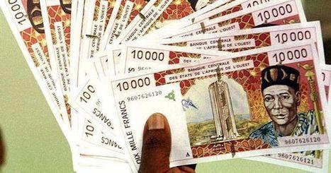 «Non, le franc CFA n'est pas responsable de l'immobilisme de l'Afrique francophone» | Géopolitique de l'Afrique | Scoop.it