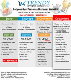 Website Development Company in Jaipur Rajasthan | Trendy Online Solution | Scoop.it