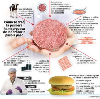 El futuro incierto de la carne de laboratorio - La Opinión de Tenerife | riesgo para una empresa de carne | Scoop.it