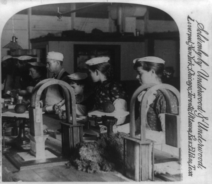 Utterly Disturbing, Century-Old Photos of Meat-Packing Facilities | Cultural History | Scoop.it