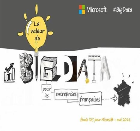 La manne du big data | Veille RC - Toute l'actualité des mois d'Avril et Mai 2014 | Scoop.it