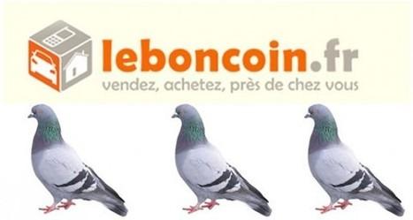 LeBonCoin : Après les arnaques, découvrez le harcèlement sexuel ! | Libertés Numériques | Scoop.it