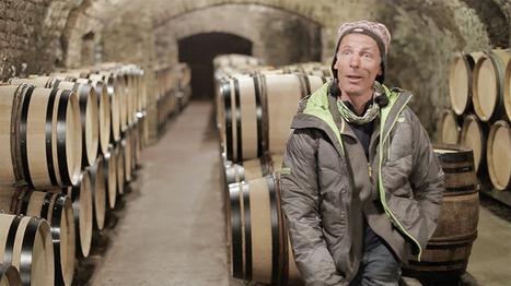Vincent Dauvissat - Vigneron à Chablis - Vidéo   Le vin quotidien   Scoop.it