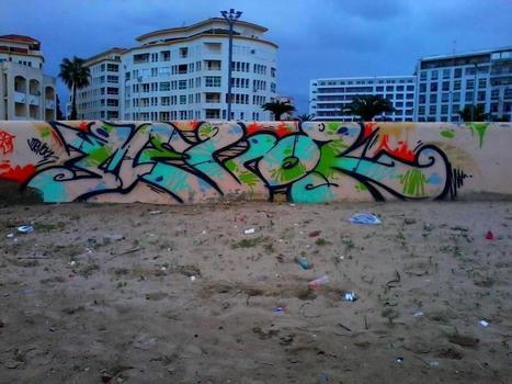 Camelbombing | Graffiti in the Middle East | Arabian Peninsula | Scoop.it