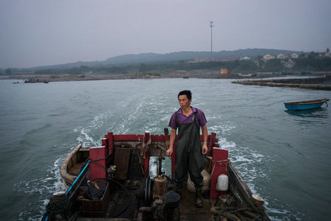 On the Verge of Extinction, a Chinese Fishing Village Resists | Confidences Canopéennes | Scoop.it