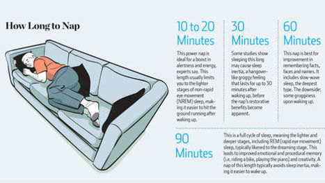 How Long to Nap for the Biggest Brain Benefits | Life and  Business Leadership | Scoop.it