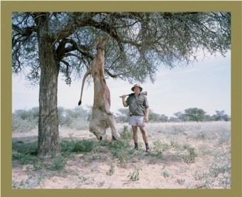 More restrictions on lion trophy hunting imports   Trophy Hunting: It's Impact on Wildlife and People   Scoop.it