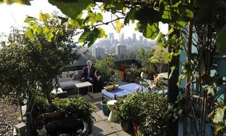 Rooftop garden lets lobbyist look forward - and back to his roots | Container Gardening | Scoop.it